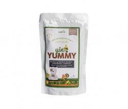 Naftie Yin & Yummy Pute mit Kürbis & Zucchini
